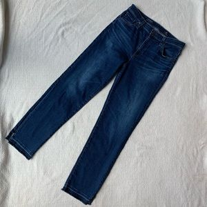 AG The Isabelle High Rise Straight Crop Jeans 29R
